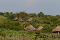 Maasai Village on the way to Ngorongoro Crater